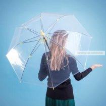 Fantux esernyő, átlátszó